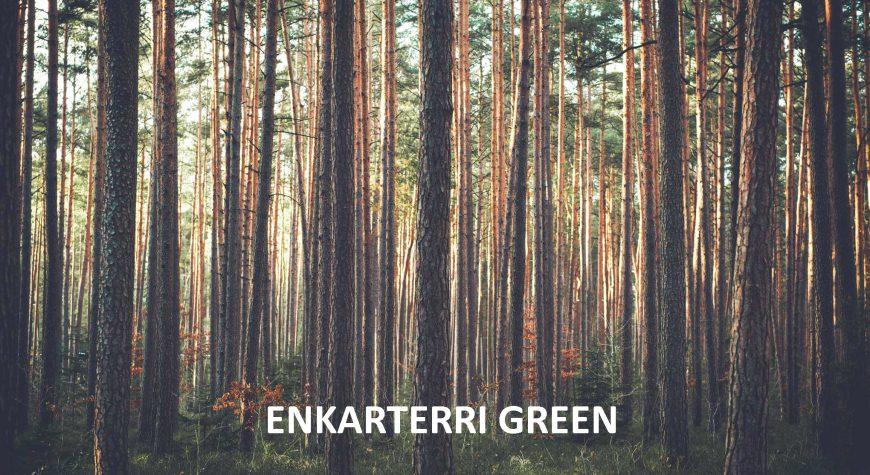 Enkarterri-Group_Historia